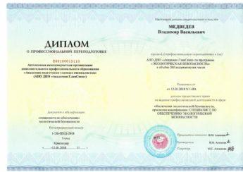 диплом - Медведев