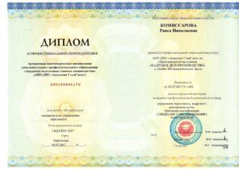 диплом - Комиссарова
